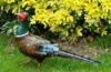 Green Metal Pheasant Garden Figure