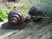 Cast Iron Snail Pair