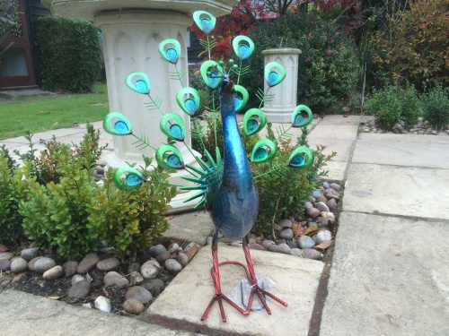 New* Large Exotic Vibrant Metal Fan Tail Peacock Garden Ornament Gift/Present