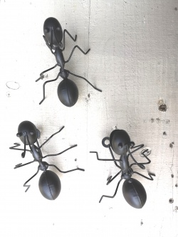 Set Of 3 Metal Fun Wall Mounted Black Ants Garden Home Fence Bugs Animals