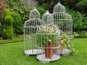 Set of Vintage-Style Birdcage Planters