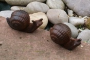 Cast Iron Snail Pair Brown